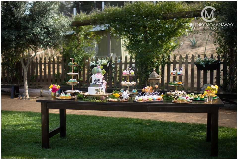 temecula-wedding-dessert-table-a-sweet-rock-pastry